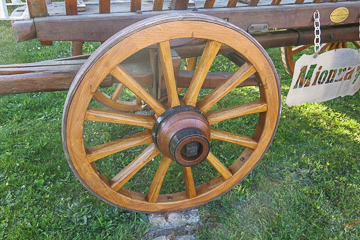 Wooden Cart Wheels - Restoration and fabrication - Horse